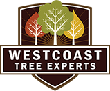 Westcoast Tree Experts